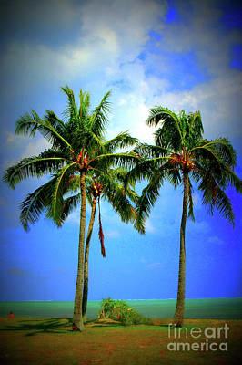 Photograph - Hawaii by Mark Gilman