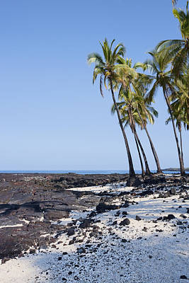 Photograph - Hawaii Paradise by Kelley King