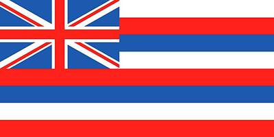 Hawaii State Flag Print by American School