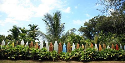 Hawaii Surfboard Fence Art Print by Michael Ledray