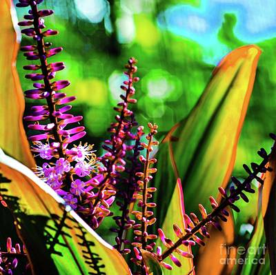 Art Print featuring the photograph Hawaii Ti Leaf Plant And Flowers by D Davila