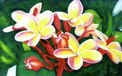 Hawaii Tropical Plumeria Flower #205 Art Print by Donald k Hall