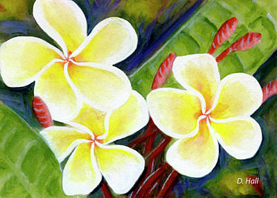 Hawaii Tropical Plumeria Flower #298, Art Print by Donald k Hall