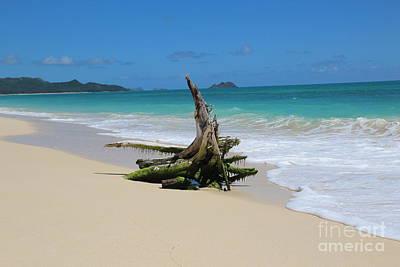 Hawaiian Beach Art Print by Anthony Jones