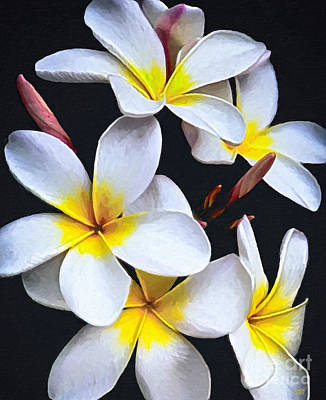 Flower Painting - Hawaiian Dreaming by David Millenheft