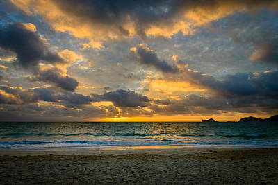 Photograph - Hawaiian Gold by Michael Scott