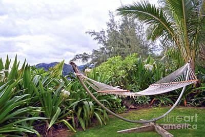 Photograph - Hawaiian Hammock by Catherine Sherman