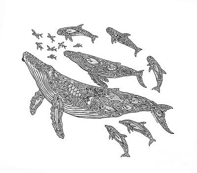 Whale Drawing - Hawaiian Humpbacks by Carol Lynne