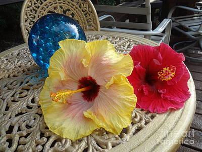Hawaiian Lovelies Art Print