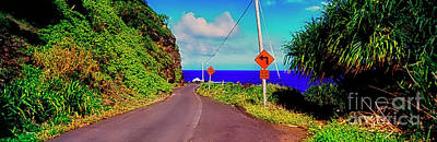 Photograph -   Hawaiian Mountian Road  by Tom Jelen