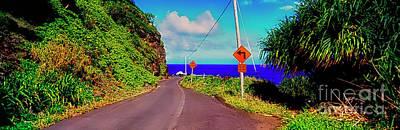 Photograph -   Hawaiian Mountian Road  by Tom Jelen