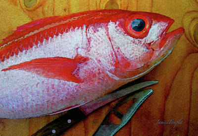 Hawaiian Onaga Digital Watercolor Art Print