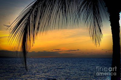 Hawaiian Palm Sunset Art Print by Kelly Wade
