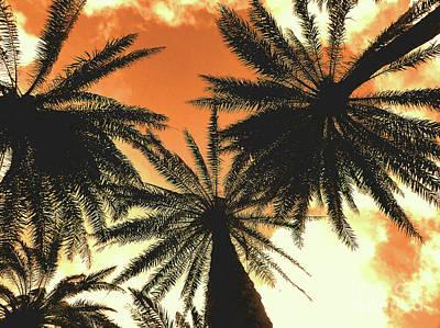 Waikiki Photograph - Hawaiian Palm Trees Nbr.2 by Scott Cameron