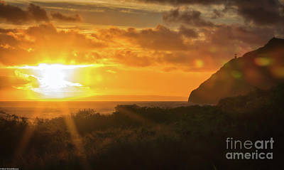 Photograph - Hawaiian Sun Kissed Morning by Mitch Shindelbower