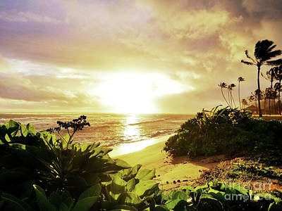 Photograph - Hawaiian Sunrise by Kristine Merc