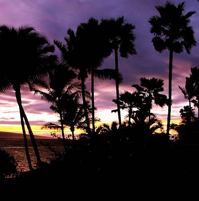 Photograph - Hawaiian Sunset II by Louise Fahy