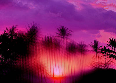 Hawaiian Sunset Art Print by Phil Powers