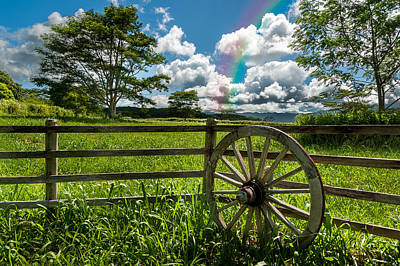 Photograph - Hawaiian Wagon Wheel by Harry Spitz