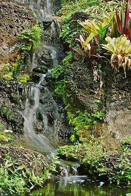Mgp Photograph - Hawaiian Waterfall by Michael Peychich
