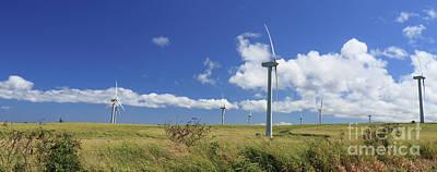 Photograph - Hawaiian Windmills by Mary Haber