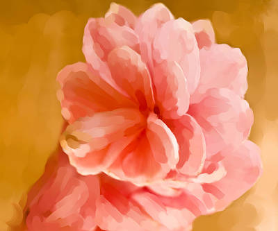 Hawian Ginger Flower Art Print by Daniel D Miller