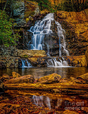 Photograph - Hawk Falls Pennsylvania by Nick Zelinsky