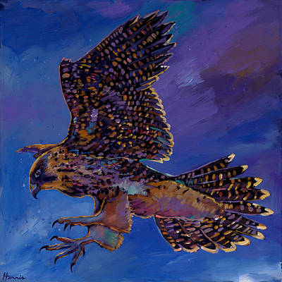 Red Tail Hawk Wall Art - Painting - Hawk Flight by Johnathan Harris
