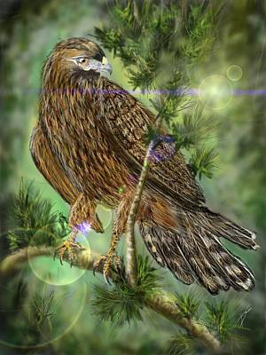 Digital Art - Hawk In The Evergreens by Darren Cannell