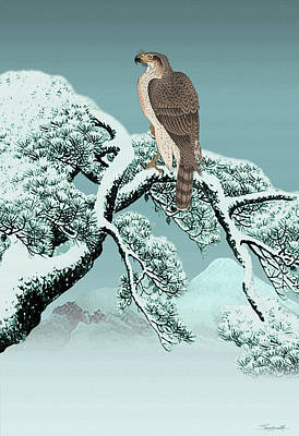 Digital Art - Hawk On Snowy Pine by IM Spadecaller