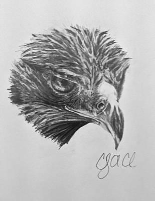 Hawkeye Drawing - Hawkeye by Cody Cole