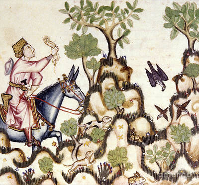 Painting - Hawking, 13th Century by Granger