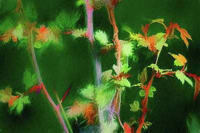 Digital Art - Hawthorn Leaves by Aliceann Carlton
