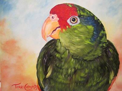 Hawthorne Art Print by Terri Clements