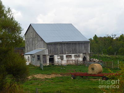 Photograph - Hay And The Barn by Lingfai Leung