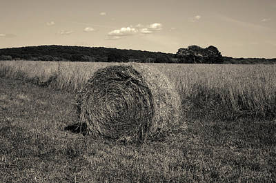 Photograph - Hay Bale I Toned by David Gordon