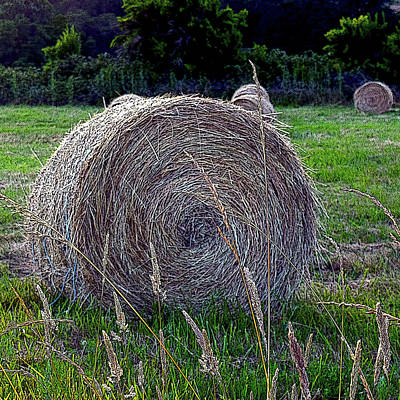 Photograph - Hay Bale by Michele Avanti