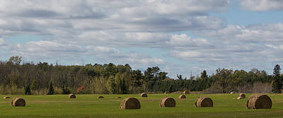 Photograph - Hay Bale Pano by Patti Deters