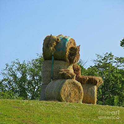 Hay Bale Teddy Bear Original by John Malone