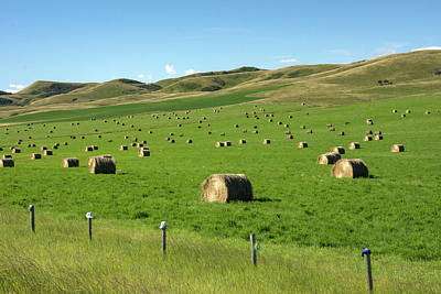 Photograph - Hay Bales 3 by Inge Riis McDonald