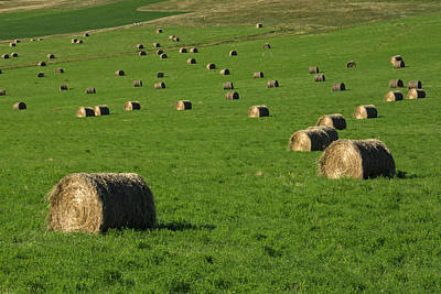Photograph - Hay Bales 4 by Inge Riis McDonald