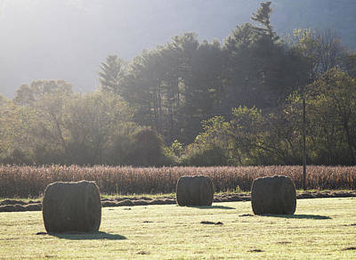 Photograph - Hay Bales And Corn Fields by Donnie Whitaker