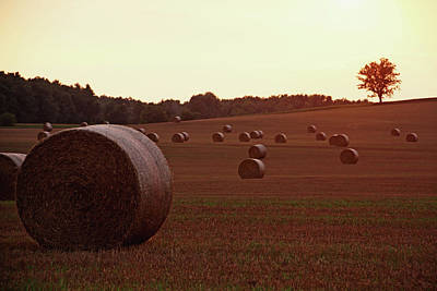 Photograph - Hay Bales At Sunset by Debbie Oppermann