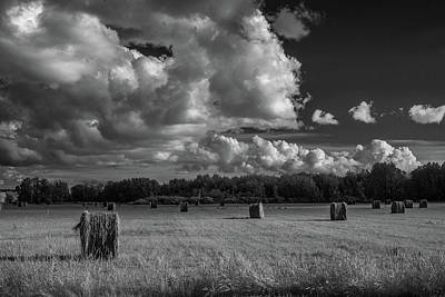 Hay Bales Bw Art Print by Paul Freidlund