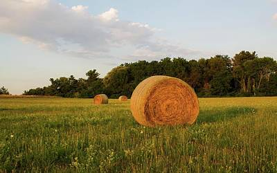 Photograph - Hay Bales Dexter Drumlin Lancaster Ma by Michael Saunders