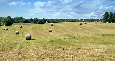 Photograph - Hay Bales In A Field by Brian Wallace