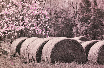 Photograph - Hay Bales by JAMART Photography