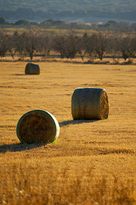 Photograph - Hay Bales by Jill Reger