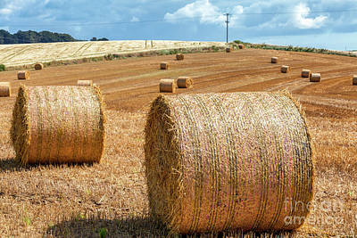 Photograph - Hay Bales by Jim Orr