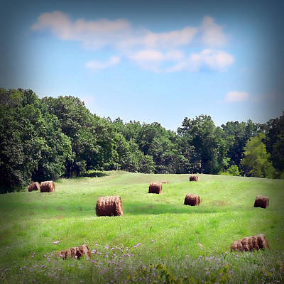 Photograph - Hay Bales by Lauren Radke